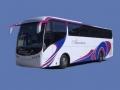 autocares-alcantara-55-plazas-01_thumb